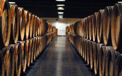 The best Bordeaux wine experiences