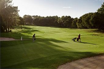 Glorious Golf