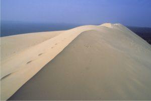 Aquitaine sand dunes