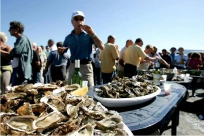 Oyster and wine festival