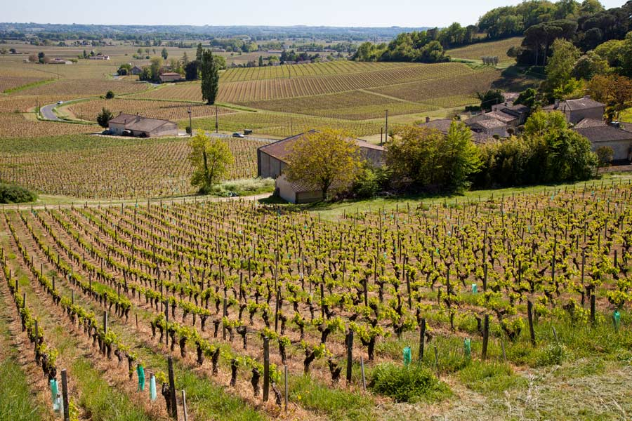 Saint-Emilion is an easy day trip from Bordeaux city centre. Bordeaux. Photo: Peter Ellegard
